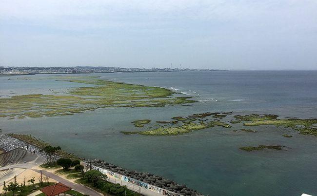 Пляжі Окінави. Відлив.