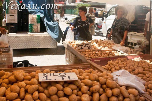 Ціни на продукти в Туреччині: ринки Махмутлара.