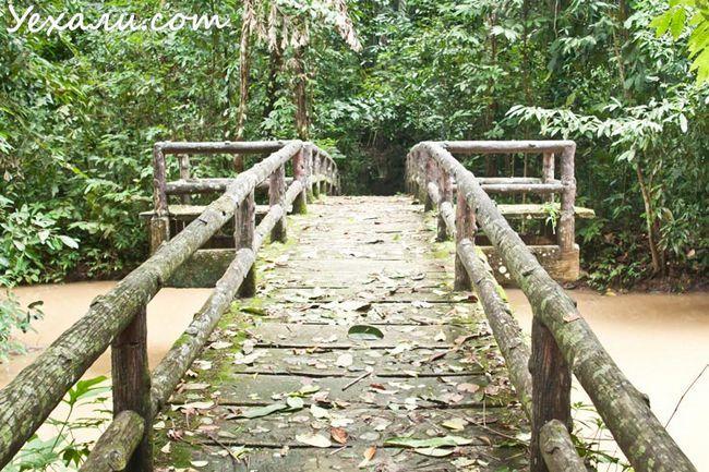 Національний парк Танбоккорані, Крабі, Таїланд