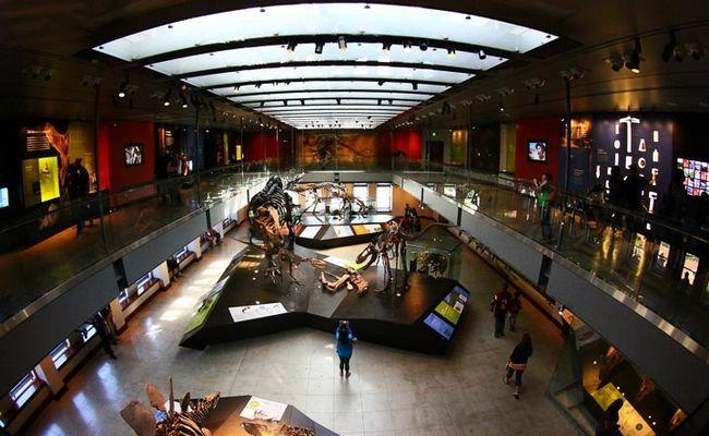 nacionalnyj-muzej-estestvennoj-istorii