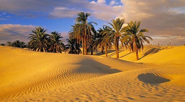 Стародавні споруди, бербери і пляжі: фото і опис пам`яток тунісу
