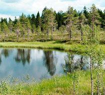 Фінляндія - тайгові ліси, озера і Санта Клаус!