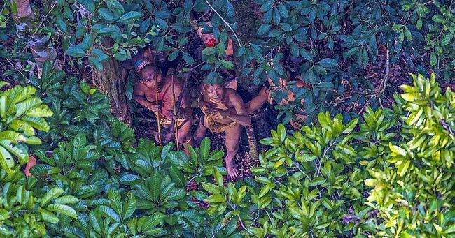 Фотограф зняв жителів ізольованого племені в лісах амазонії