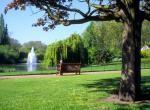 Гайд-парк (лондон)