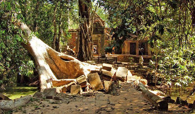 Фото храму Та Прохм в Камбоджі.
