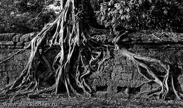 екскурсія в Камбоджу