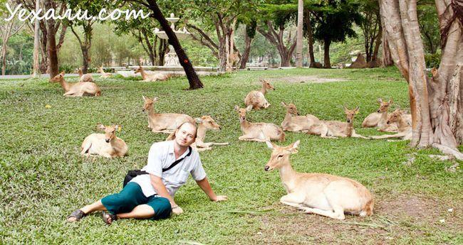 Відпочинок в Паттайя, зоопарк Као Кео