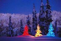 Яка погода на курортах чорногорії в січні?
