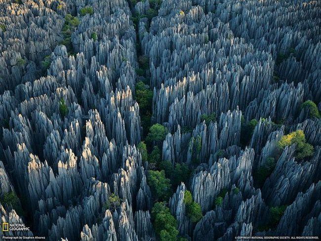 Кам`яний ліс заповідника цинги-де-бемараха (tsingy de bemaraha), мадагаскар