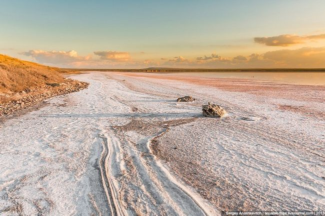 Кояшське озеро: солоне озеро рожевого кольору в криму