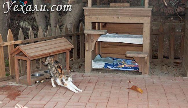 Фото Аланії, Туреччина: котячі будиночки в парку