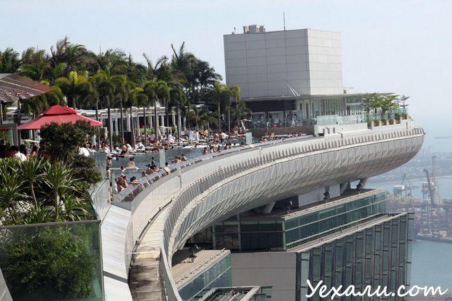 Фото басейну Marina Bay Sands в Сінгапурі