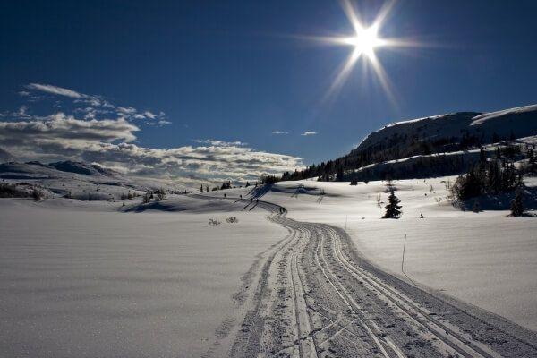 сніговий Норефьель