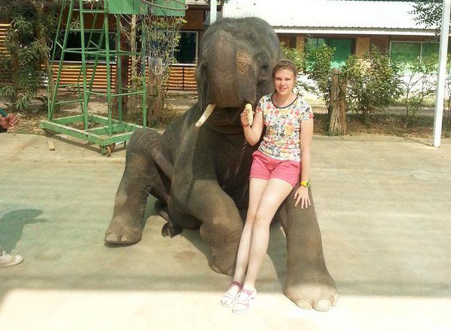 Катання на слонах на річці Квай