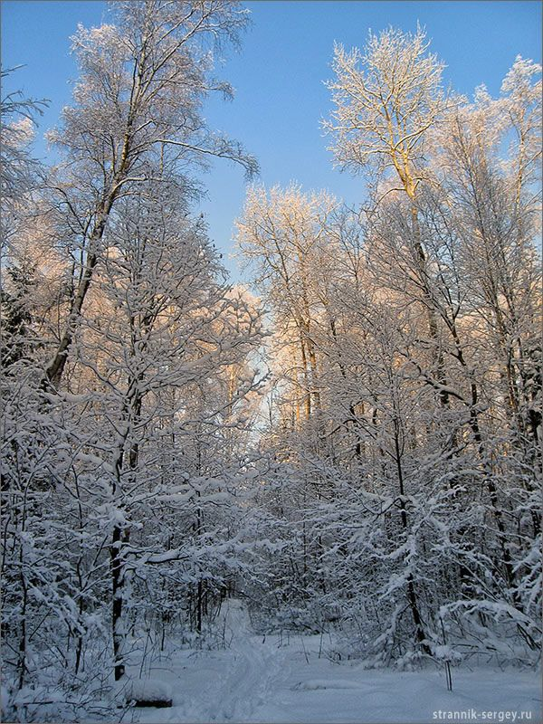 Новорічні листівки з російської зими