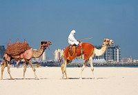 Відпустка в оае в січні: яка погода в дубаї, шарджі і на інших популярних курортах?