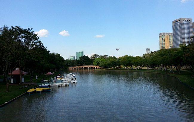 Парк чатучак в бангкоку: відмінний відпочинок після відмінного шопінгу!