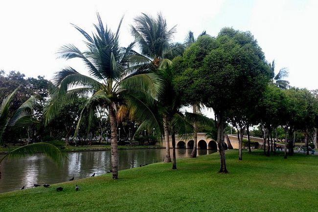 Парк Чатучак в Бангкоку, фото.