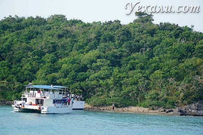 Острів мавп під час екскурсії Паттая Бей Круїз