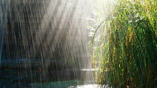 температура повітря і води на курортах В`єтнаму в червні