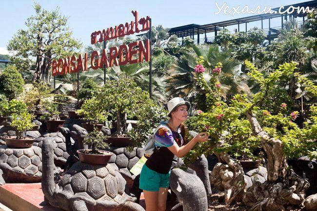 Тропічний сад Нонг Нуч в Паттайя, фото