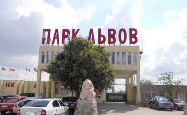 Сафарі-парк левів «тайган», частинка африки, привезена в крим