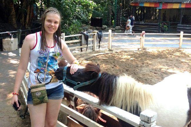 Сафарі парк в Бангкоку: тварин можна погладити і погодувати.