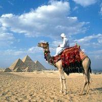 Найдоступніші тури в єгипет