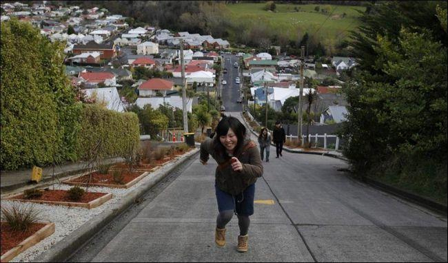 Крута вулиця в Новій Зеландії 2