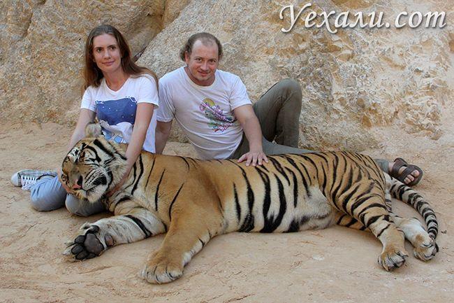 Тигровий храм в Канчанабурі, Таїланд